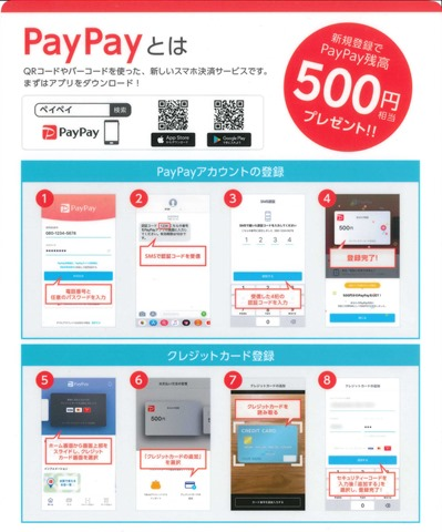 pay_1